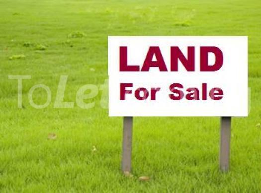 Land for sale A. K. Ahmed Street Central Area Abuja - 0