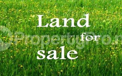Land for sale Monastery Road Sangotedo Ajah Lagos - 0