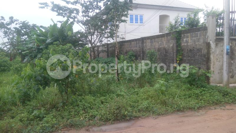 Land for sale Holy Ghost Estate,Off Igbo Ectche Road,By B-J Lodge Area,Rumukurushi Rumuokwurushi Port Harcourt Rivers - 3