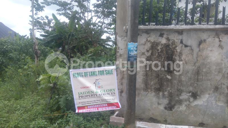 Land for sale Holy Ghost Estate,Off Igbo Ectche Road,By B-J Lodge Area,Rumukurushi Rumuokwurushi Port Harcourt Rivers - 5