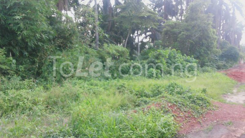 Land for sale Beside Nnamdi Azikiwe Universsity Awka (along Enugu Onitsha Expressway)  Idemili south Anambra - 11