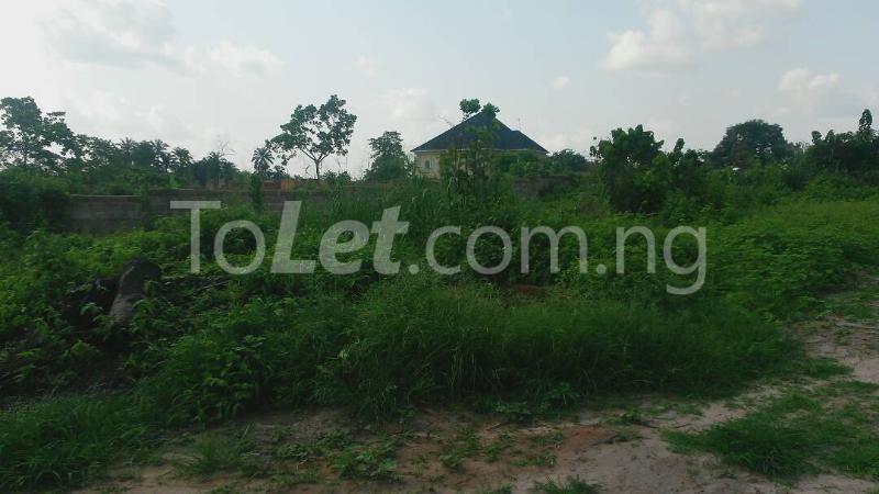 Land for sale Beside Nnamdi Azikiwe Universsity Awka (along Enugu Onitsha Expressway)  Idemili south Anambra - 13