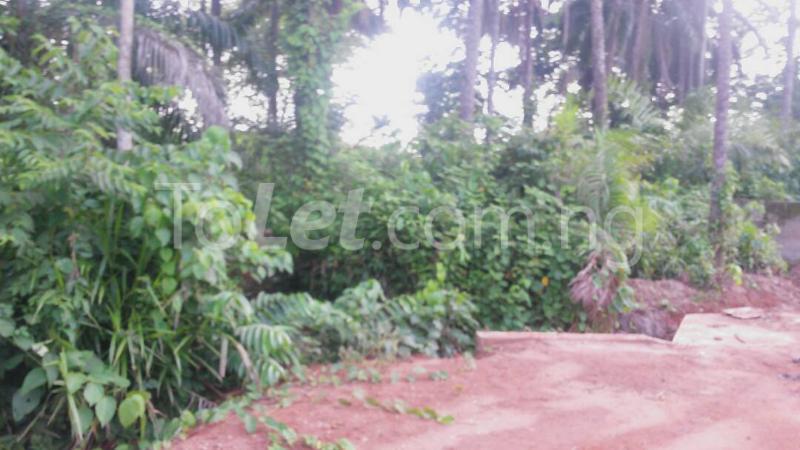 Land for sale Beside Nnamdi Azikiwe Universsity Awka (along Enugu Onitsha Expressway)  Idemili south Anambra - 1