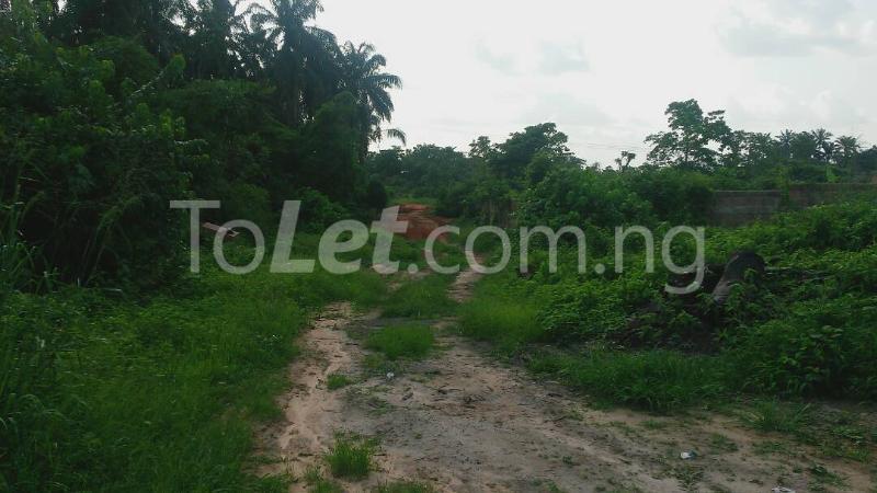 Land for sale Beside Nnamdi Azikiwe Universsity Awka (along Enugu Onitsha Expressway)  Idemili south Anambra - 14