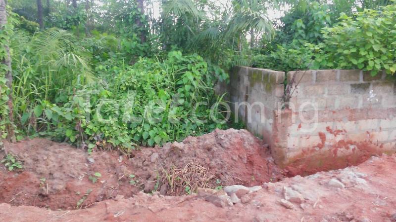 Land for sale Beside Nnamdi Azikiwe Universsity Awka (along Enugu Onitsha Expressway)  Idemili south Anambra - 0