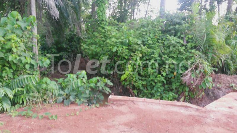 Land for sale Beside Nnamdi Azikiwe Universsity Awka (along Enugu Onitsha Expressway)  Idemili south Anambra - 7