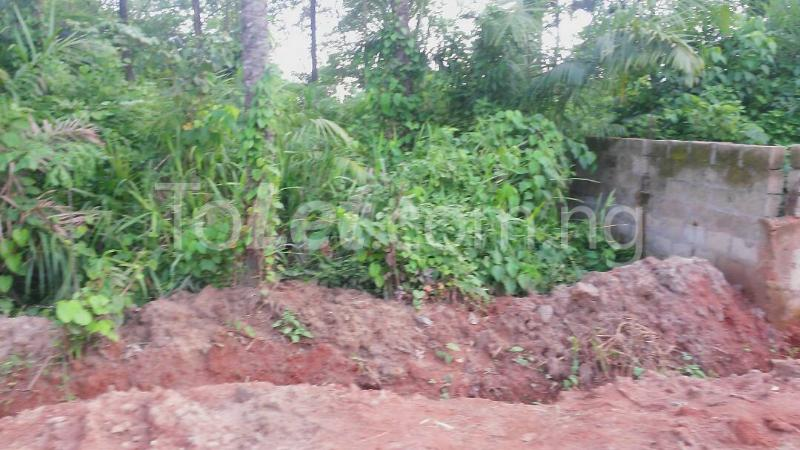 Land for sale Beside Nnamdi Azikiwe Universsity Awka (along Enugu Onitsha Expressway)  Idemili south Anambra - 4
