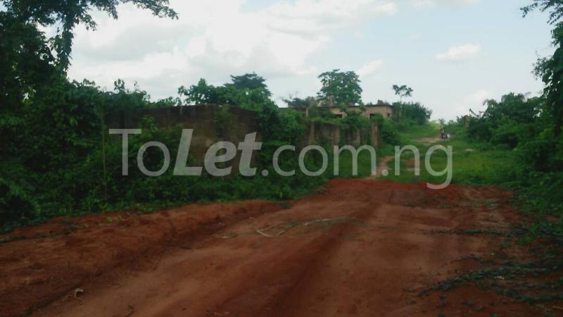 Land for sale Beside Nnamdi Azikiwe Universsity Awka (along Enugu Onitsha Expressway)  Idemili south Anambra - 10