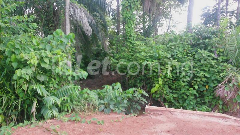 Land for sale Beside Nnamdi Azikiwe Universsity Awka (along Enugu Onitsha Expressway)  Idemili south Anambra - 12