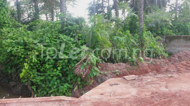 Land for sale Beside Nnamdi Azikiwe Universsity Awka (along Enugu Onitsha Expressway)  Idemili south Anambra - 9