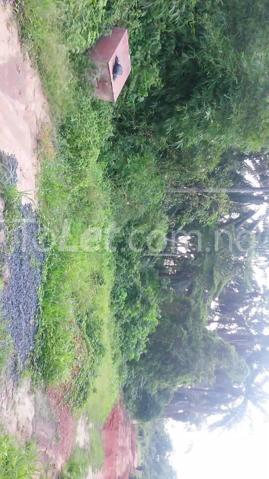 Land for sale Beside Nnamdi Azikiwe Universsity Awka (along Enugu Onitsha Expressway)  Idemili south Anambra - 15