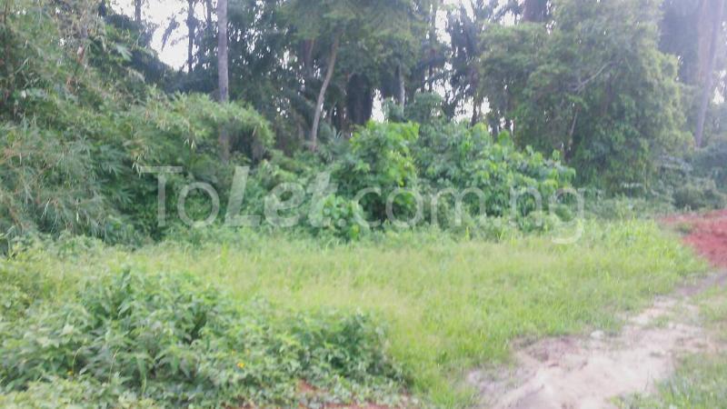 Land for sale Beside Nnamdi Azikiwe Universsity Awka (along Enugu Onitsha Expressway)  Idemili south Anambra - 5