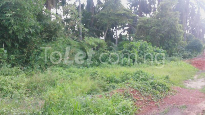 Land for sale Beside Nnamdi Azikiwe Universsity Awka (along Enugu Onitsha Expressway)  Idemili south Anambra - 8