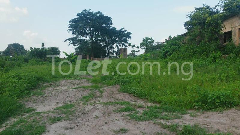 Land for sale Beside Nnamdi Azikiwe Universsity Awka (along Enugu Onitsha Expressway)  Idemili south Anambra - 3