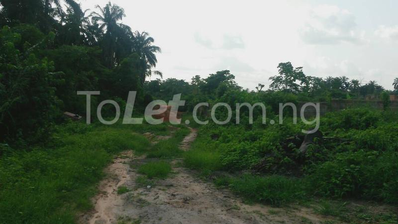 Land for sale Beside Nnamdi Azikiwe Universsity Awka (along Enugu Onitsha Expressway)  Idemili south Anambra - 16