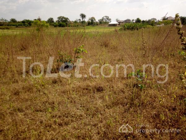 Land for sale elere village eyenkorin Ilorin Kwara - 0