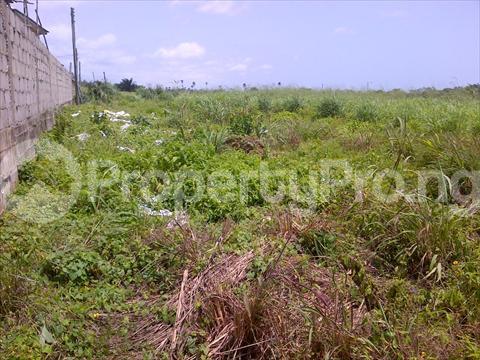Residential Land Land for sale Plamgrove estate,  Ilupeju industrial estate Ilupeju Lagos - 0