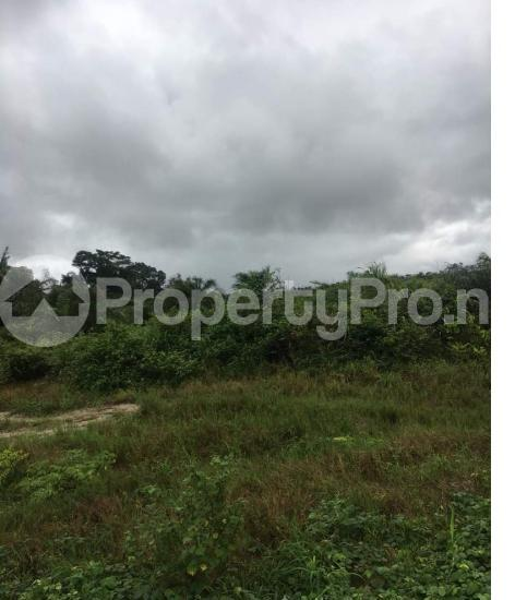 Residential Land Land for sale Amagba Oredo Edo - 0
