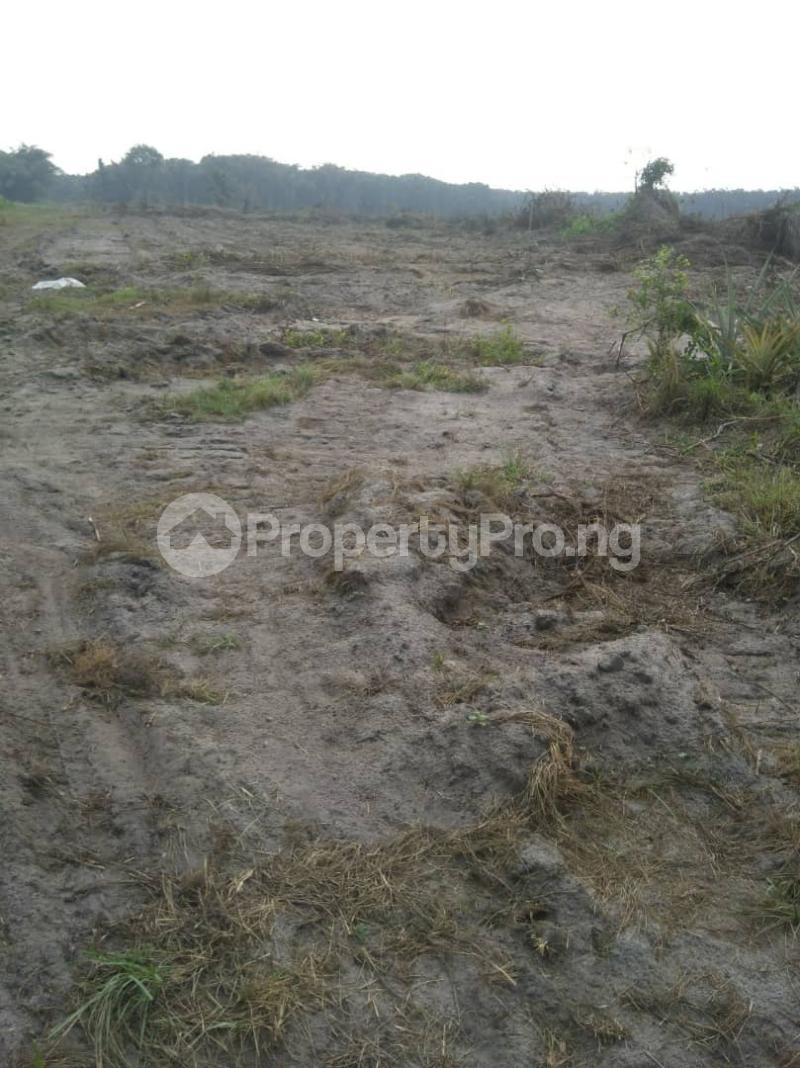 Mixed   Use Land Land for rent Eluju, opposite popular,Amen estate,Eleko road. Eleko Ibeju-Lekki Lagos - 1