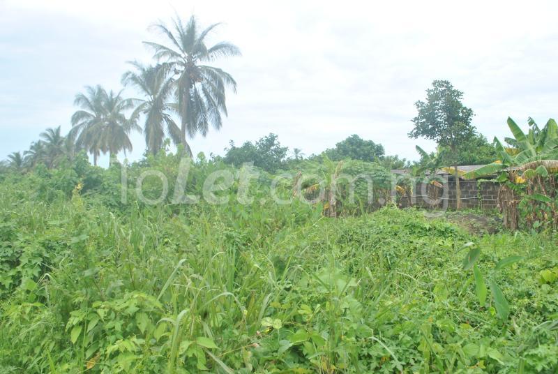 Land for sale Aradagun  Badagry Badagry Lagos - 2
