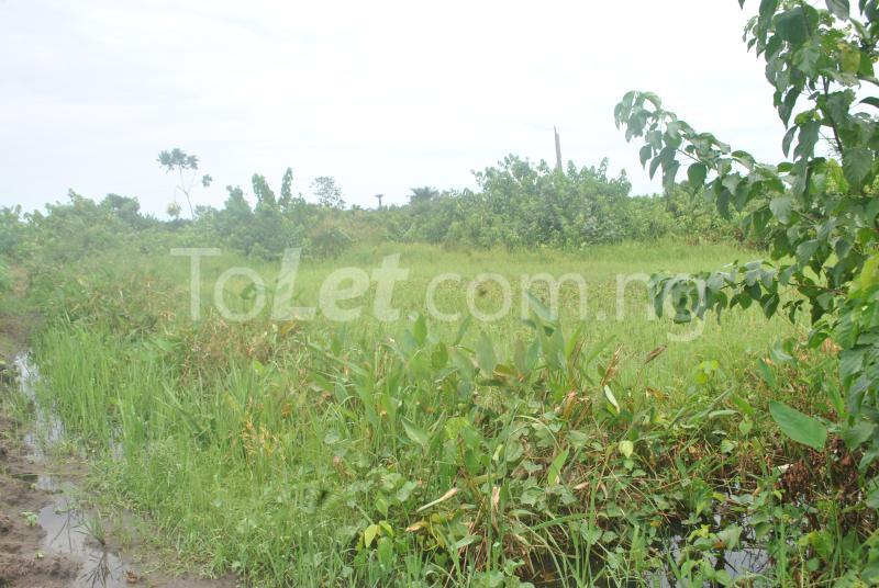 Land for sale Aradagun  Badagry Badagry Lagos - 3