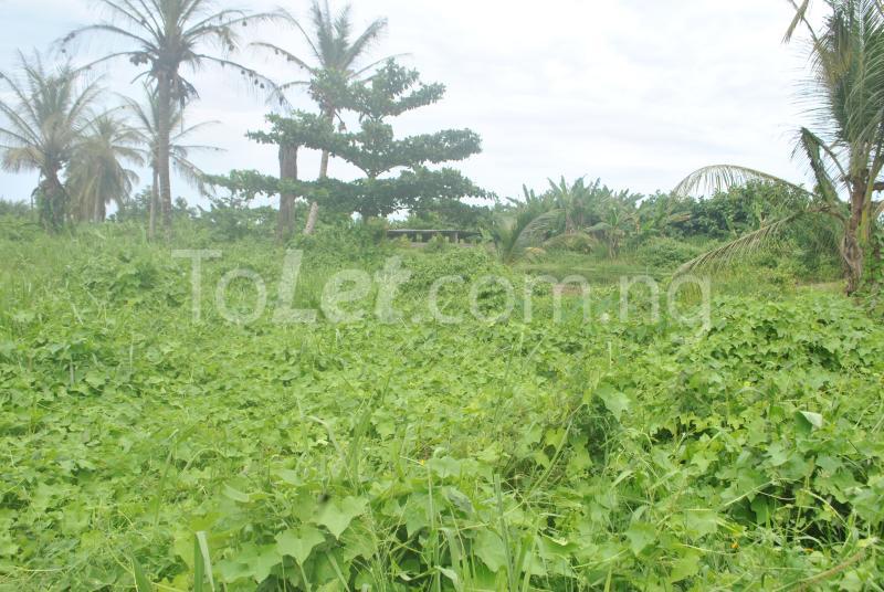 Land for sale Aradagun  Badagry Badagry Lagos - 1
