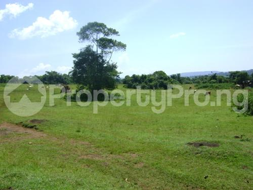 Land for sale Off Awaye express way Iseyin Abeokuta express way Iseyin Oyo - 0
