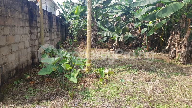 Mixed   Use Land Land for sale GRA, Benin City Oredo Edo - 2