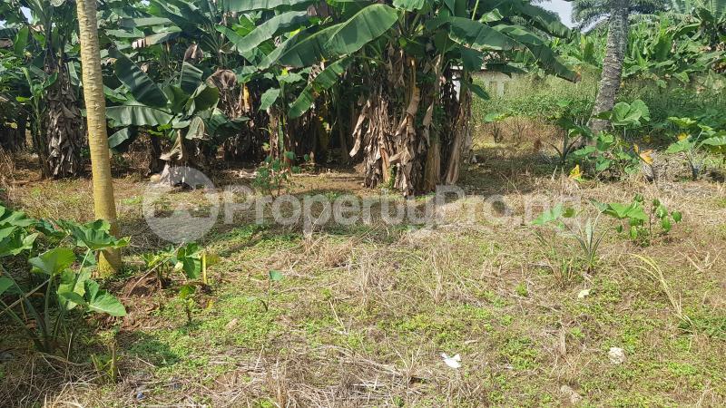 Mixed   Use Land Land for sale GRA, Benin City Oredo Edo - 1