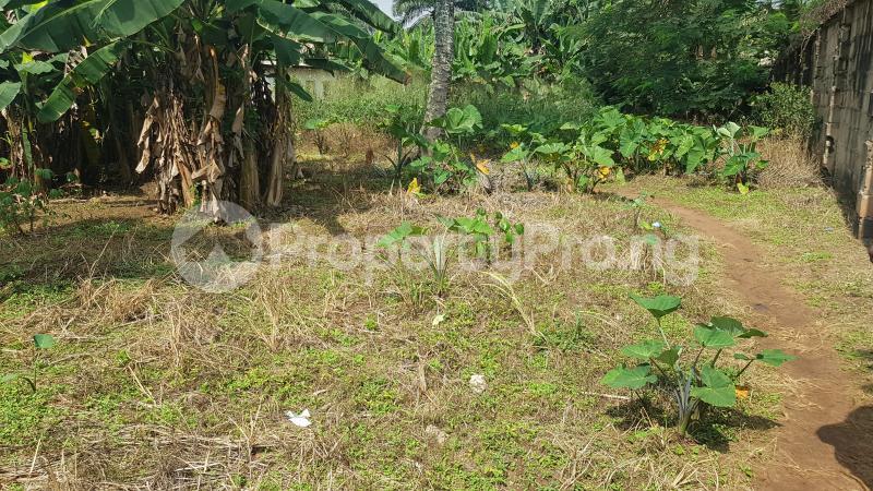 Mixed   Use Land Land for sale GRA, Benin City Oredo Edo - 3