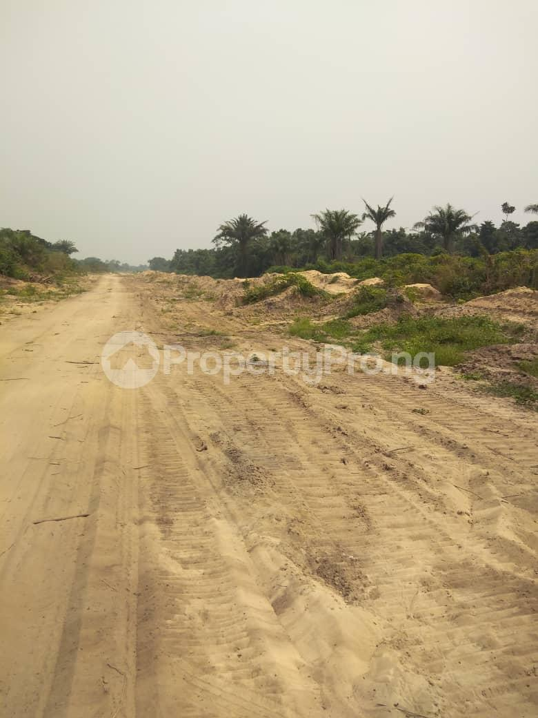 Mixed   Use Land Land for sale Eleko Ibeju-Lekki Lagos - 3