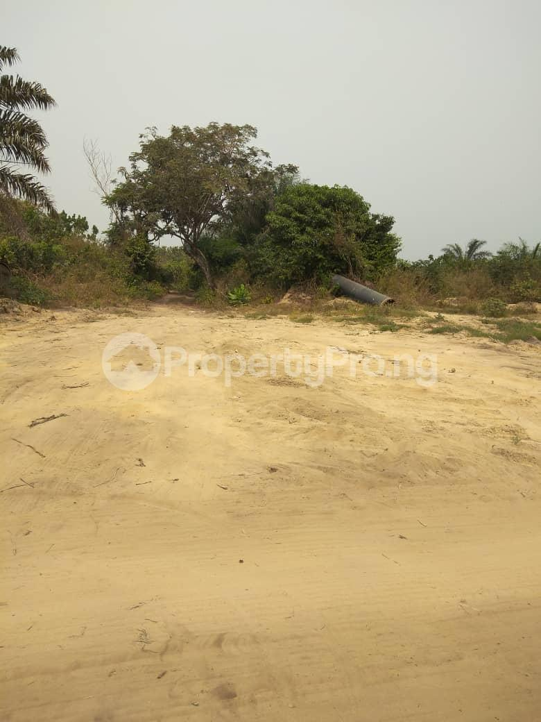 Mixed   Use Land Land for sale Eleko Ibeju-Lekki Lagos - 5
