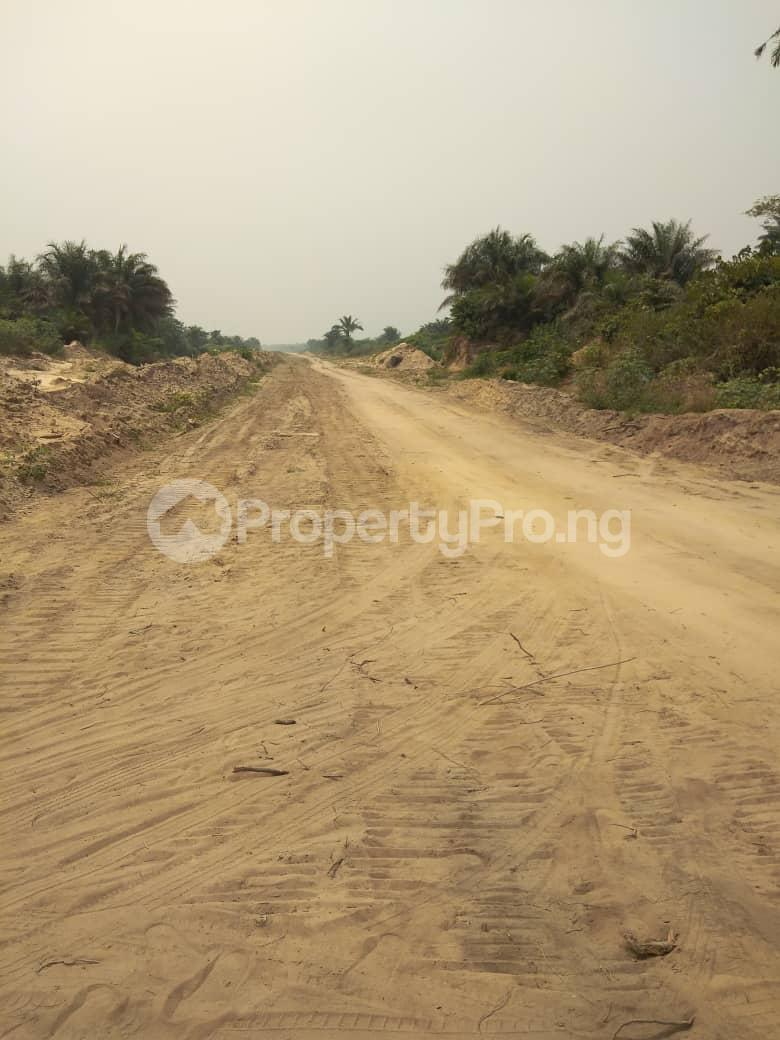 Mixed   Use Land Land for sale Eleko Ibeju-Lekki Lagos - 2