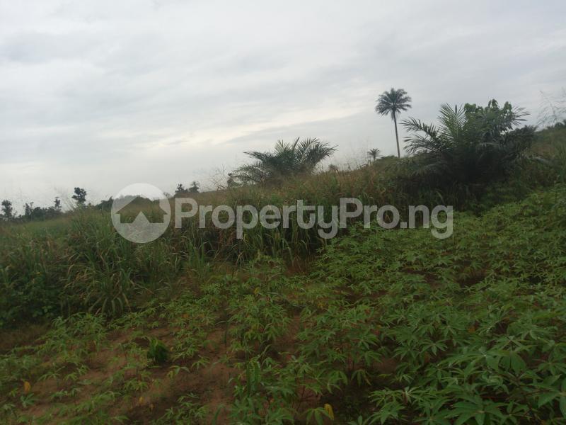 Mixed   Use Land Land for sale Umuekwunne in Ngor Okpuala LGA Owerri Imo - 0