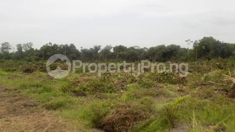 Serviced Residential Land Land for sale Ilasan Lekki Lagos - 0