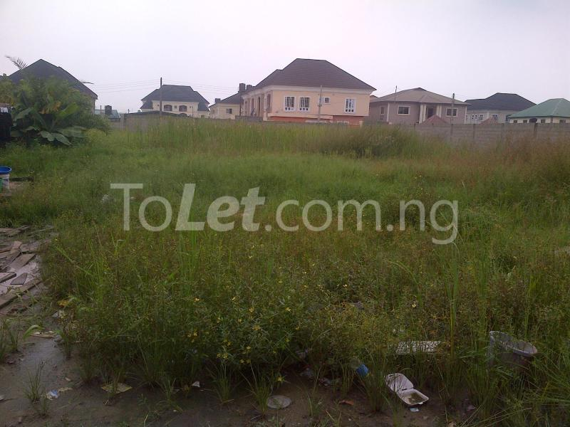 Land for sale Divine Estate Amuwo Odofin Lagos - 1