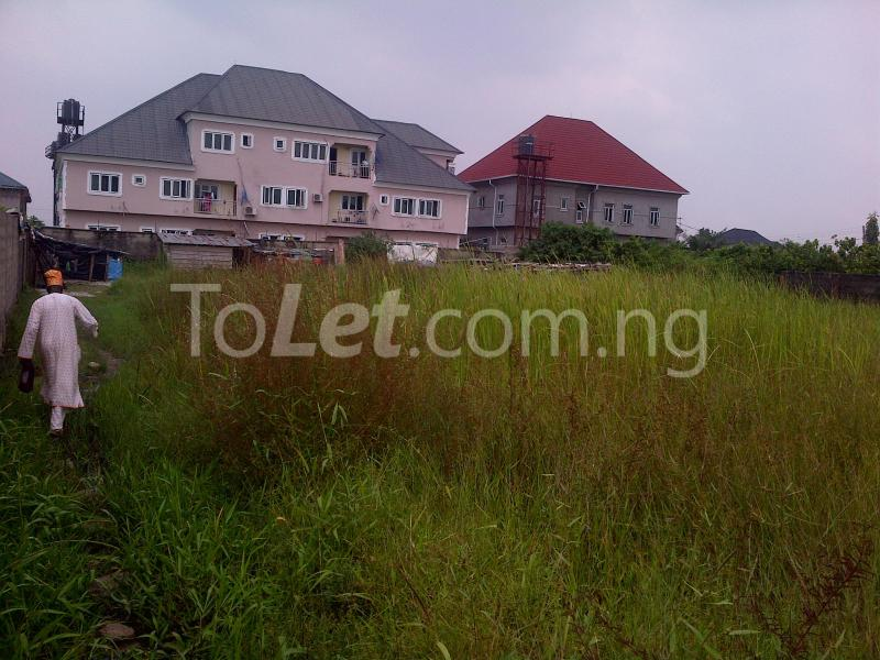 Land for sale Divine Estate Amuwo Odofin Lagos - 4