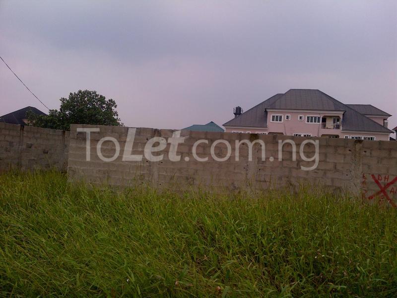 Land for sale Divine Estate Amuwo Odofin Lagos - 3