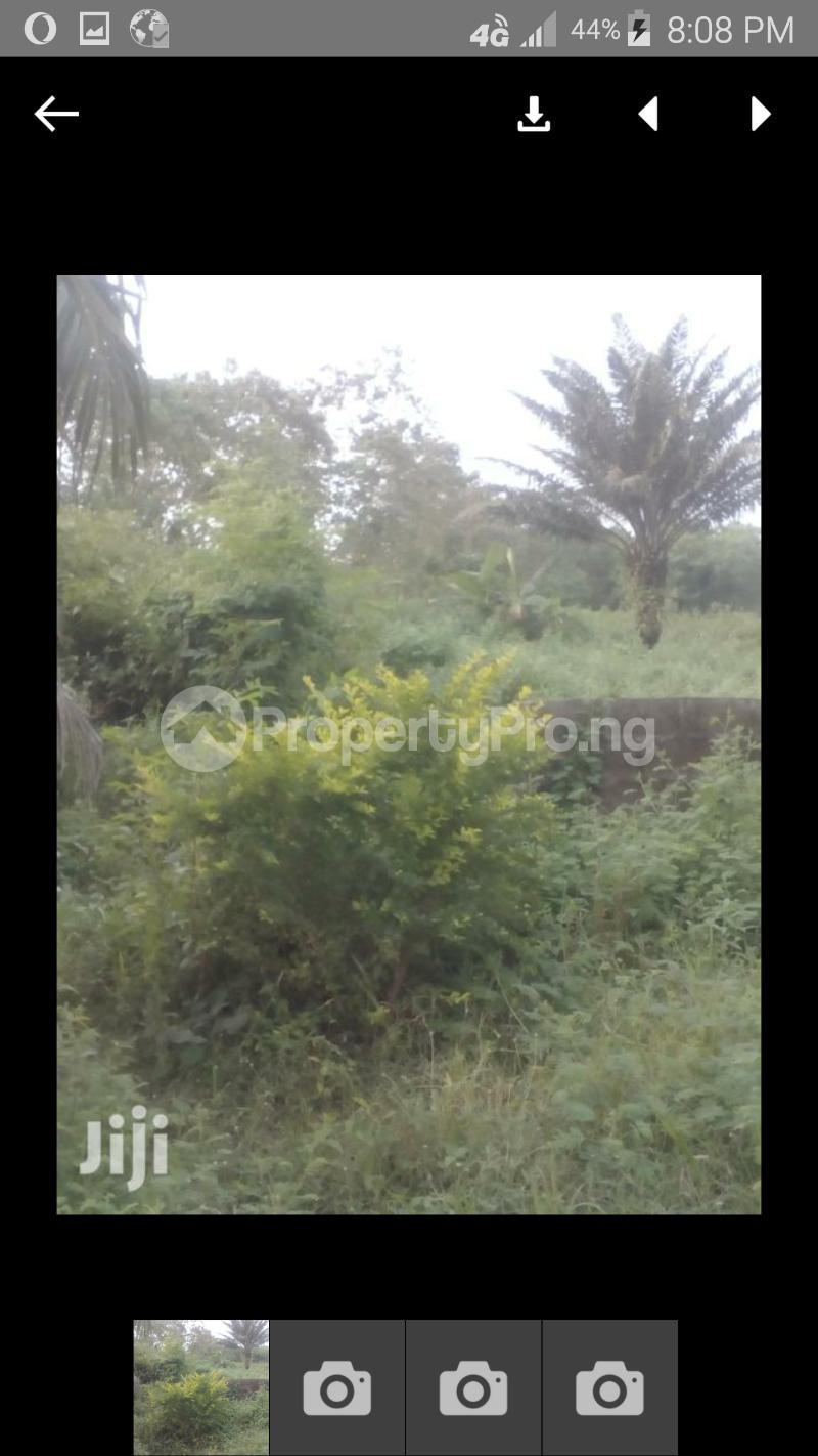 Mixed   Use Land Land for sale Blf.11 Alhaji esan street omiasoro ilesa.  Ilesha East Osun - 1