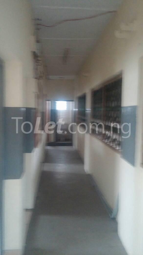 2 bedroom Flat / Apartment for rent off Ogunlana drive Ogunlana Surulere Lagos - 7