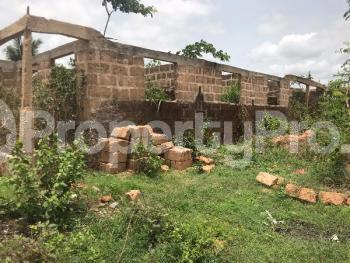 Mixed   Use Land Land for sale okada Ovia SouthWest Edo - 1