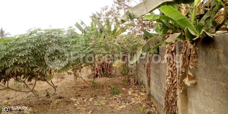 Mixed   Use Land Land for rent - Magboro Obafemi Owode Ogun - 2