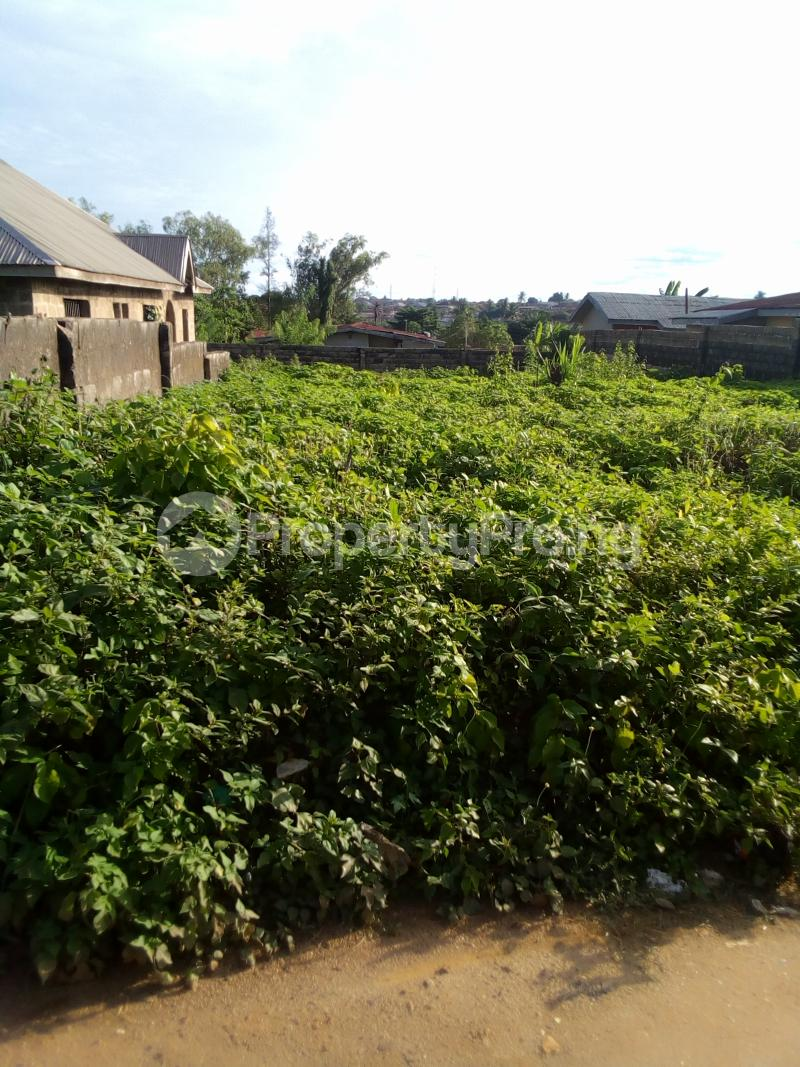Residential Land Land for sale Moremi estate along oau ife campus  Ife Central Osun - 0