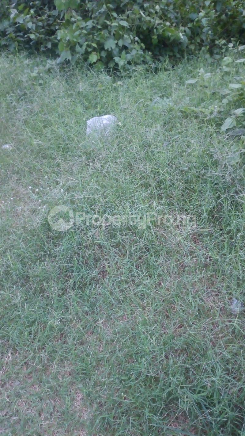 Commercial Land Land for rent Igando  Eleko Ibeju-Lekki Lagos - 0