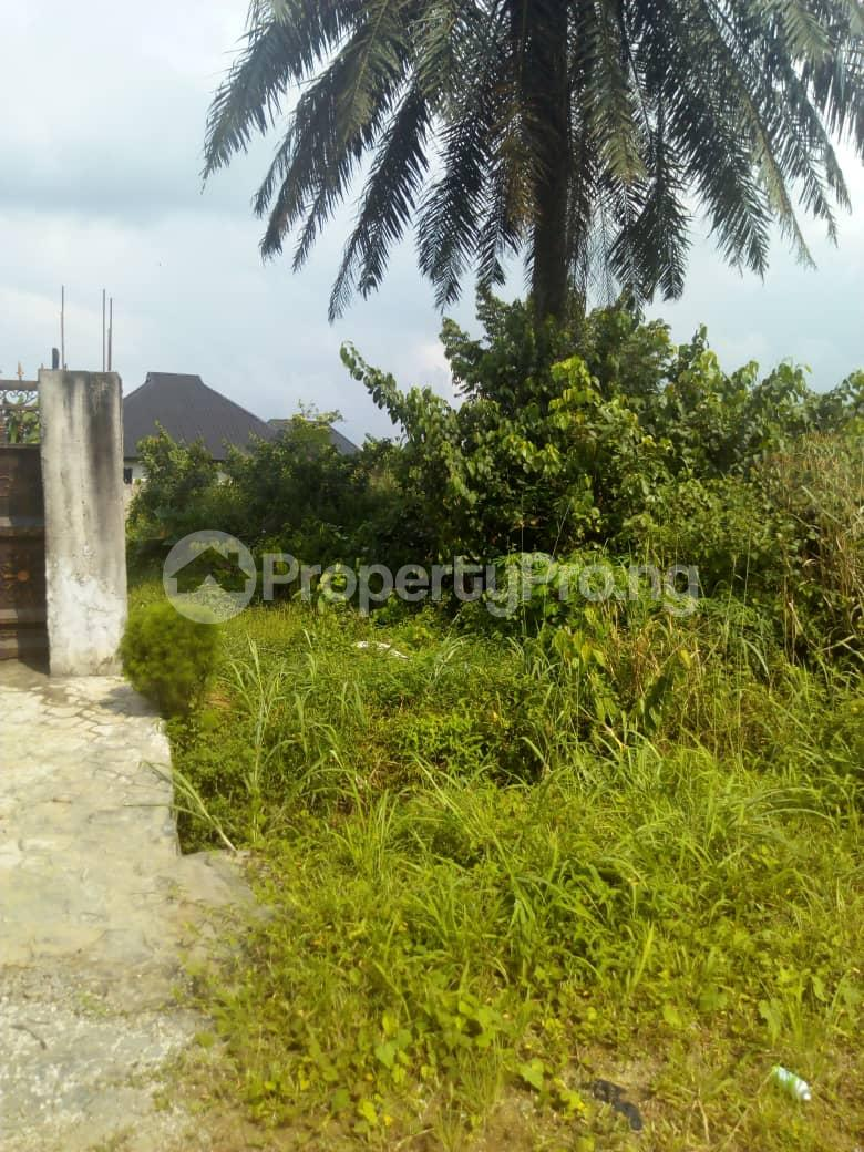 Residential Land Land for sale Pearl Gardens, Shell Estate  Eliozu Port Harcourt Rivers - 0
