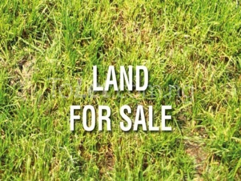 Land for sale Close to Vine church Oluyole esate branch Oluyole Estate Ibadan Oyo - 1