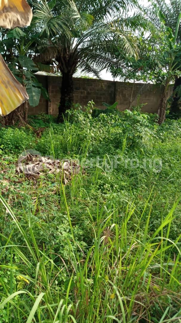 Residential Land Land for sale Off Lagos Ibadan express road Mowe Obafemi Owode Ogun - 2