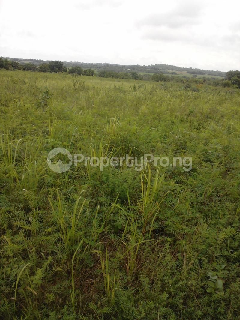 Land for sale Iseyin-Okeho Road Iseyin Oyo - 0