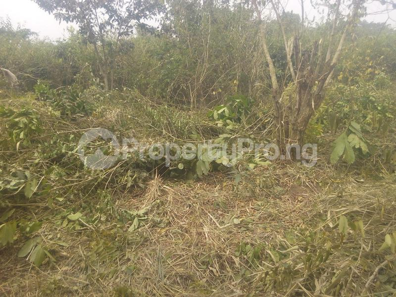 Land for sale  Ofikin town off saki road Atisbo LG, Oyo state  Atisbo Oyo - 1