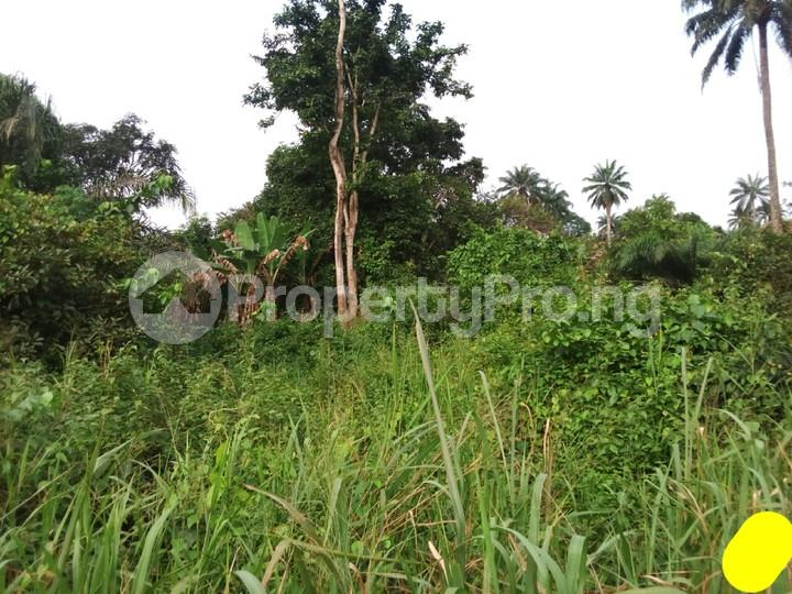 Land for sale  Ofikin town off saki road Atisbo LG, Oyo state  Atisbo Oyo - 4